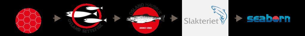 Livsløp- stamfisk - settefisk - havbruk - slakteriet - seaborn