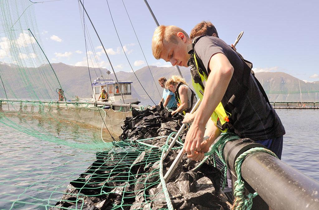 Ledig stilling: Driftsoperatør matfisk